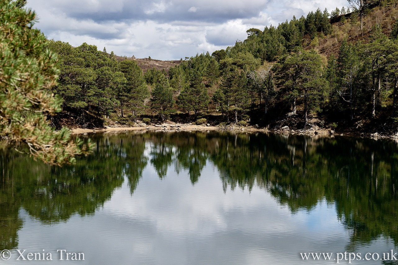 Lochan Uaine in the spring
