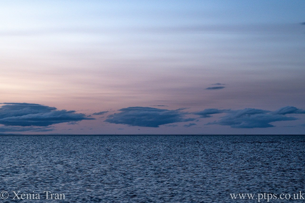 pink evening sky with blue clouds floating above the sea