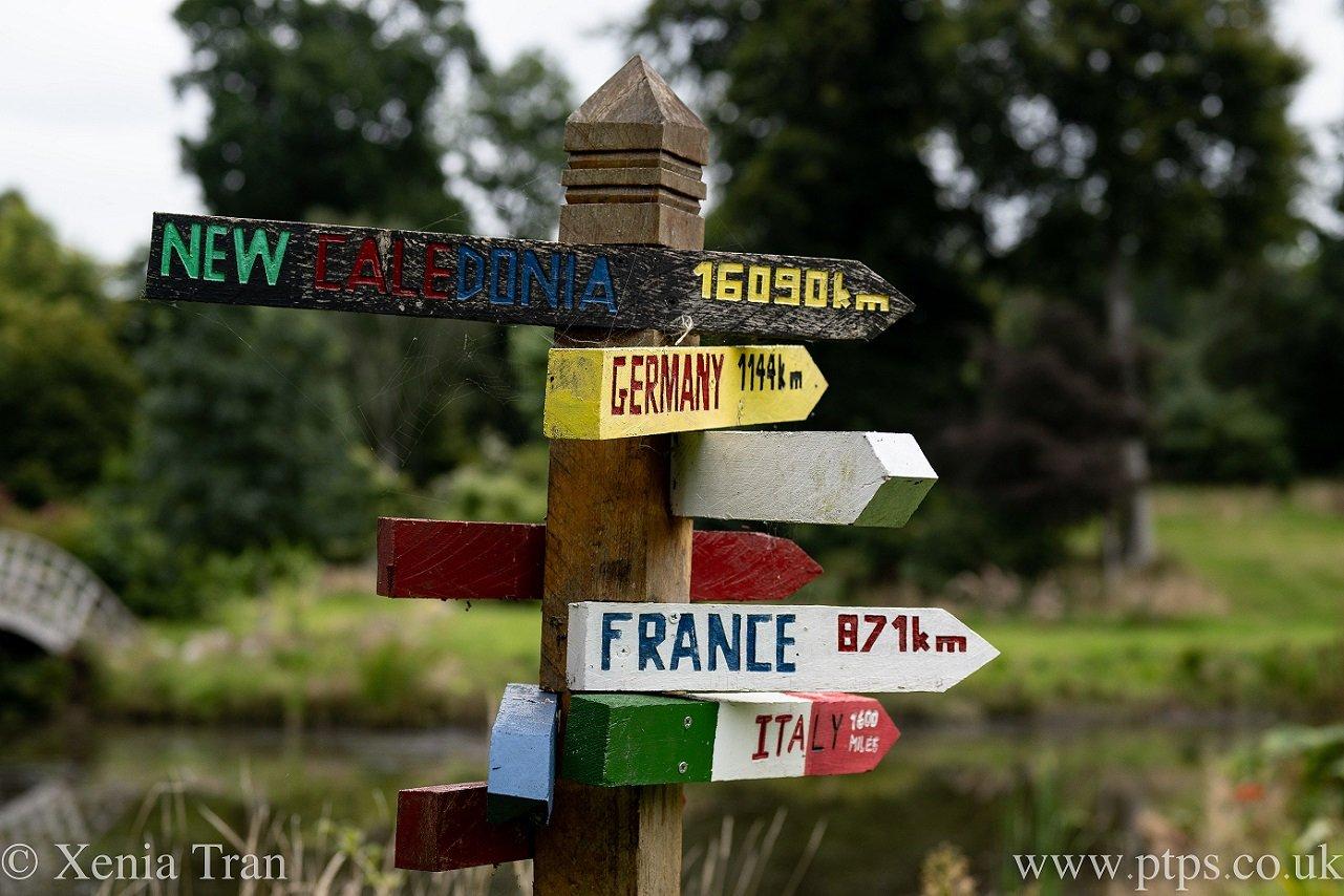 wooden signpost in a woodland garden